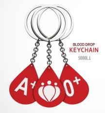 DSC-keychain